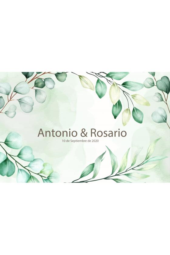 BODA ANTONIO & ROSARIO